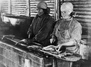 Кушеватский рыбозавод в годы войны снабжал фронт «живым серебром»